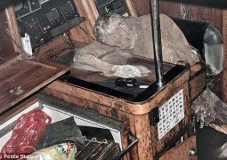 mumificado