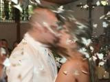 borboleta-em-cerimonias-de-casamento
