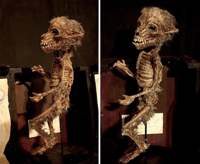 esqueletos-de-Thomas-Theodore-Merrylin_02