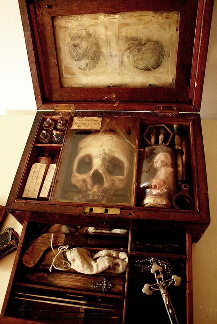 esqueletos-de-Thomas-Theodore-Merrylin_03
