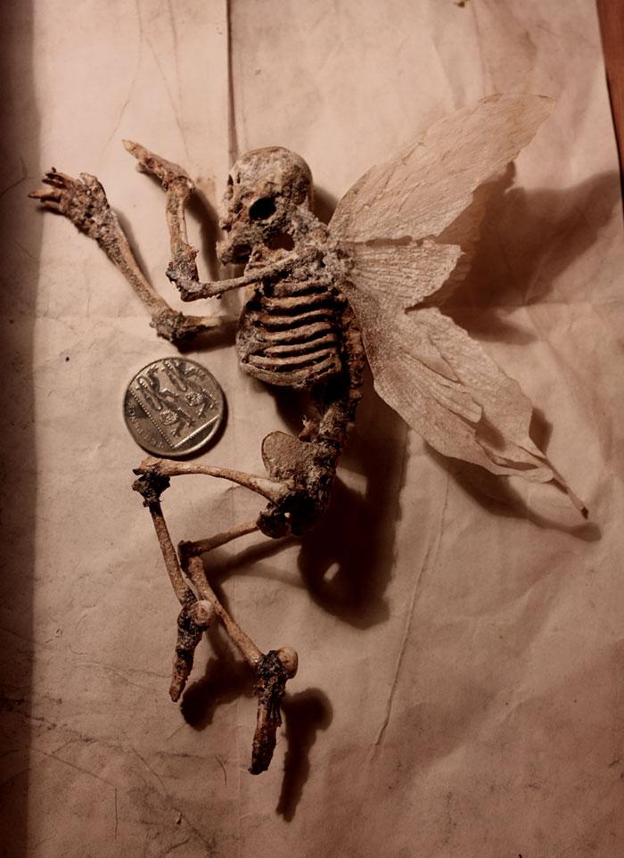 esqueletos-de-Thomas-Theodore-Merrylin_04