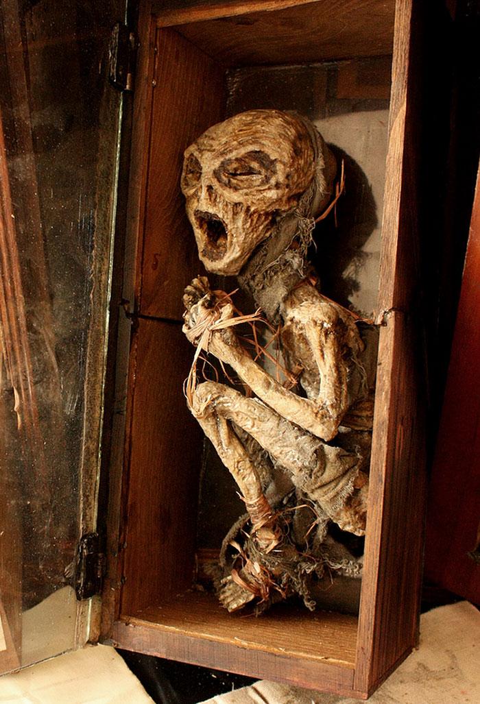esqueletos-de-Thomas-Theodore-Merrylin_07