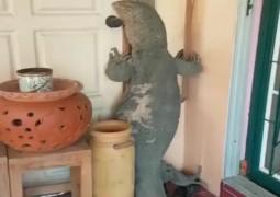 lagarto-gigante