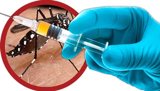 Resultado de imagem para vacina contra a dengue
