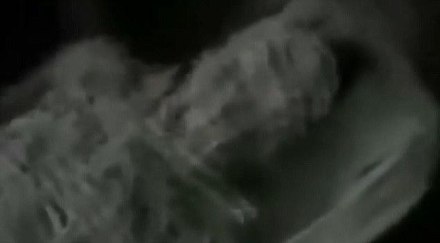 Vaza vídeo que mostra agentes da KGB examinando alienígena mumificado há 13.000 anos no Egito, de acordo com teóricos da conspiração