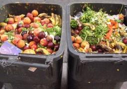 desperdicio-de-comida-no-Brasil