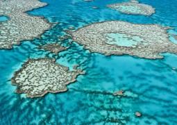 barreira-de-coral