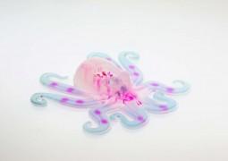octobot-robo-maleavel