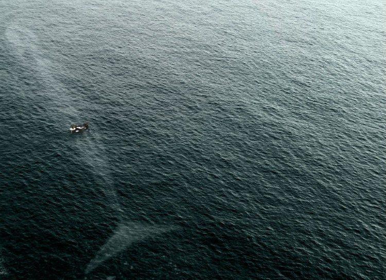dezoito-fotos-assustadoras-que-vao-fazer-voce-pensar-duas-vezes-sobre-o-oceano_03