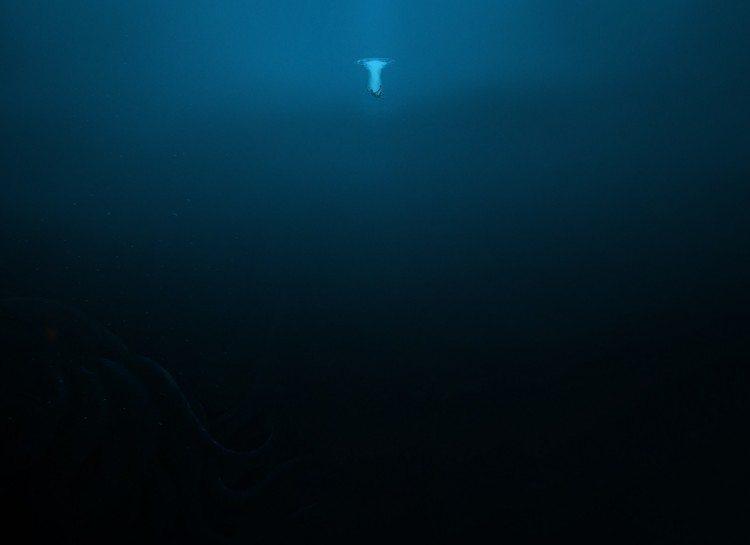 dezoito-fotos-assustadoras-que-vao-fazer-voce-pensar-duas-vezes-sobre-o-oceano_05