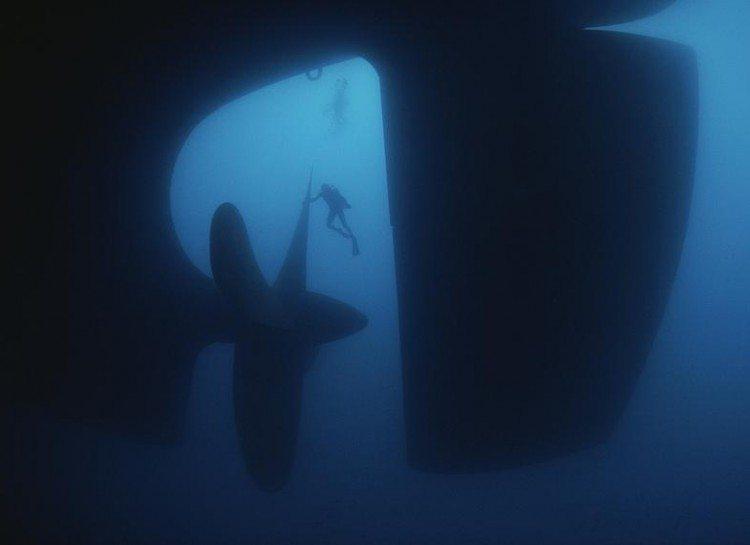 dezoito-fotos-assustadoras-que-vao-fazer-voce-pensar-duas-vezes-sobre-o-oceano_11
