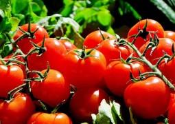 tomates_01
