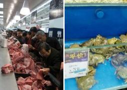 20-fotos-de-mercados-chineses-que-vão-te-causar-arrepios