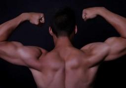 musculo-mais-forte-do-corpo-humano_capa