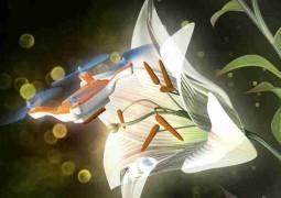 abelha-polinizador