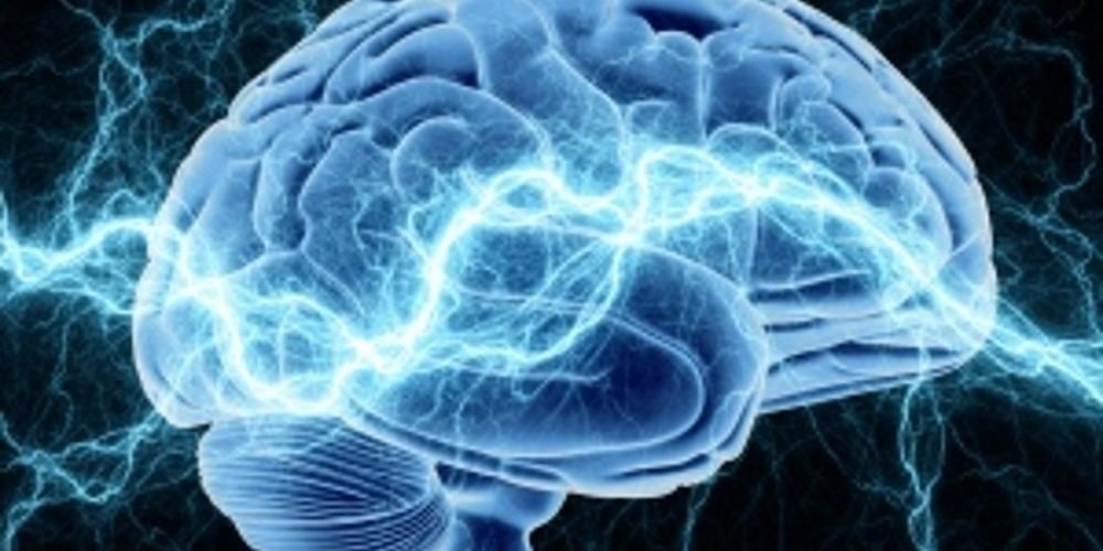 cerebro-humano_01