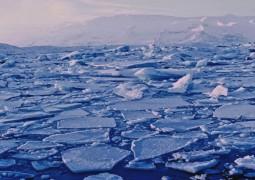 refreeze-arctic_1024
