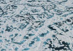 o-artico-esta-ficando-verde