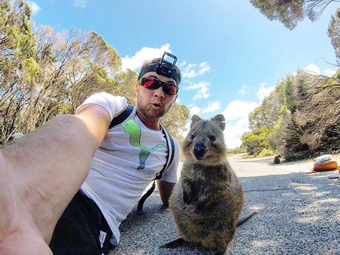 quokka-meets-cyclist-man-australia_2