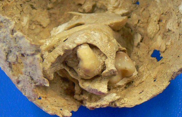 descobertas-arqueologicas-mais-apavorantes-4