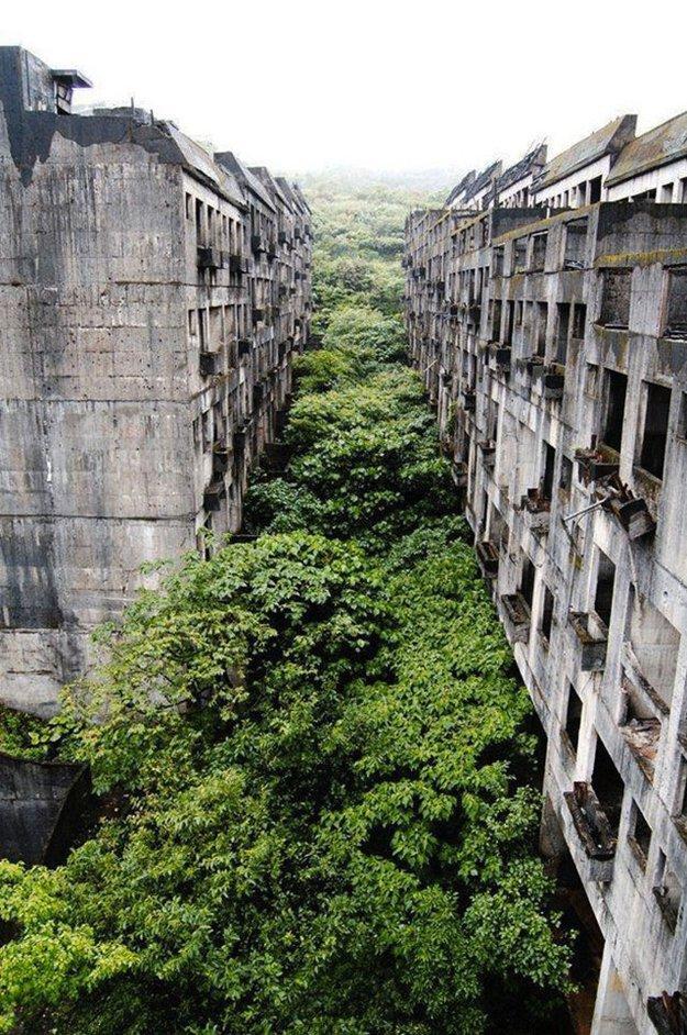 lugares-abandonados-dominados-pela-natureza_04