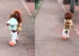 cachorro-andando-em-duas-patas