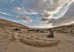 cemiterio-de-baleias-1