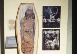 mumia-papel-mache