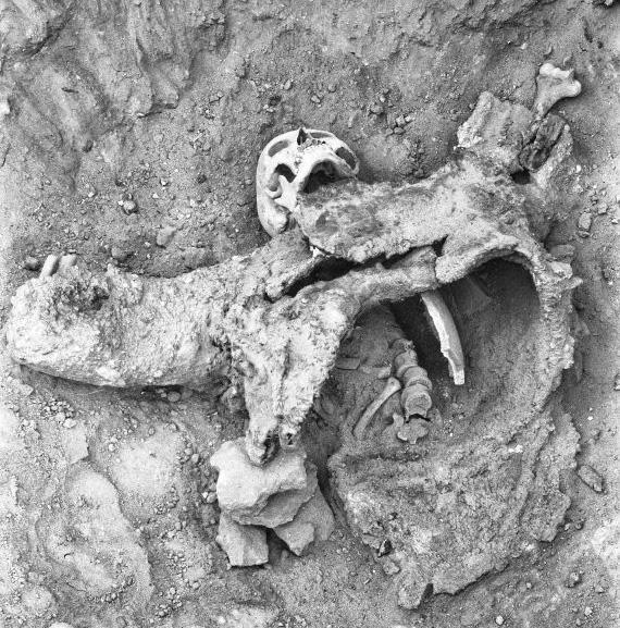 descobertas-arqueologicas_14