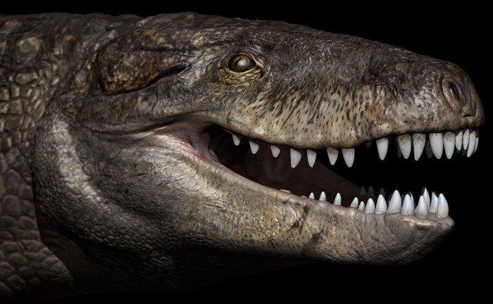 este-crocodilo_1