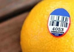 verdade-sobre-numeros-de-frutas