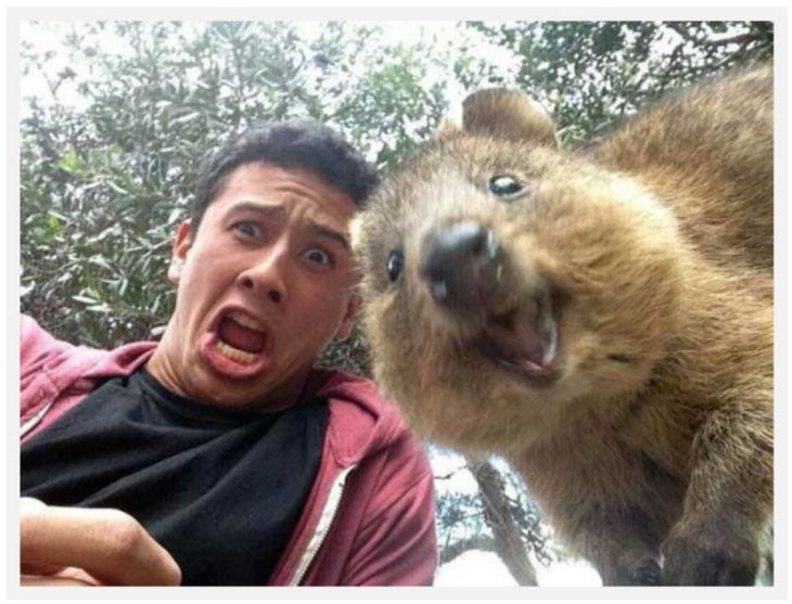 selfies-a-otro-nivel-3