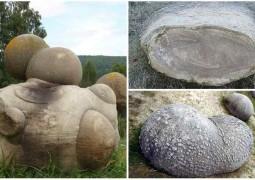 pedras-vivas