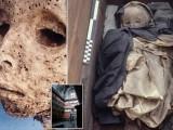 crianca-mumificada_capa