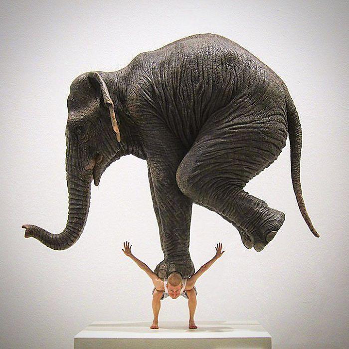 estatuas-lei-da-gravidade_9